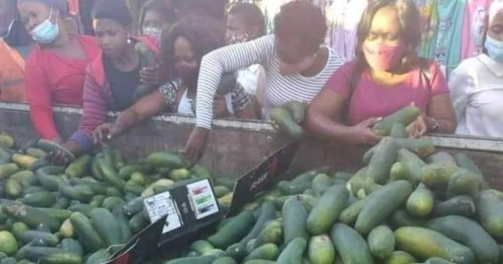 "Mike Sonko cheekily hints at venturing in cucumber business: ""Ladies wanaipenda sana"""