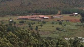 Nyandarua: Uhuru Primary School Closed Indefinitely after 8 Pupils Test Positive for COVID-19