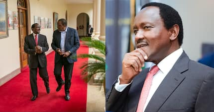 Kalonzo Musyoka video vowing never to work with Uhuru Kenyatta revived after new appointment
