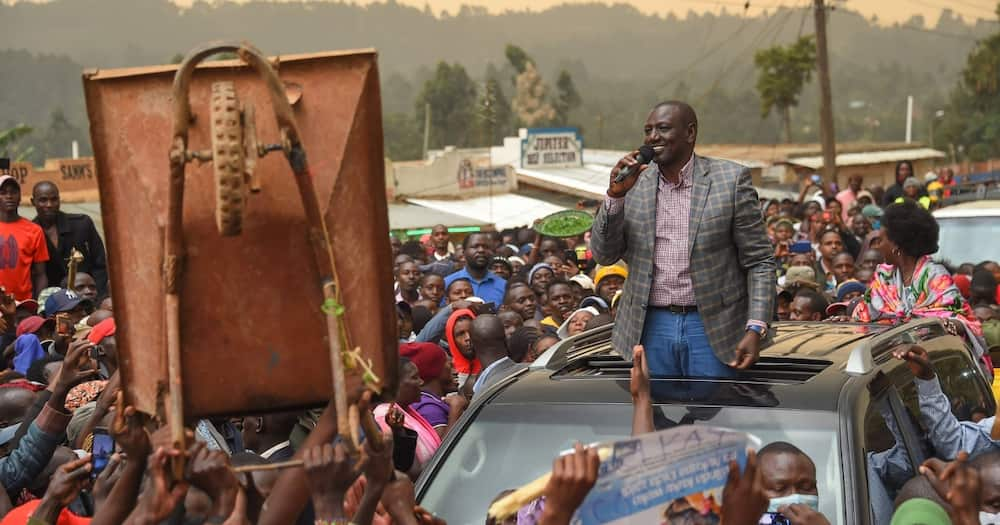 Can't quit, won't quit: William Ruto vows to stay put in Jubilee Party