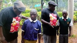 Full scholarship for Busia boy who walked 87km to join Form One in Maseno School
