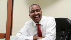 Irungu Nyakera: Kenya Tea Sector Lobby Chairman Declares He'll Vie for Murang'a Governorship