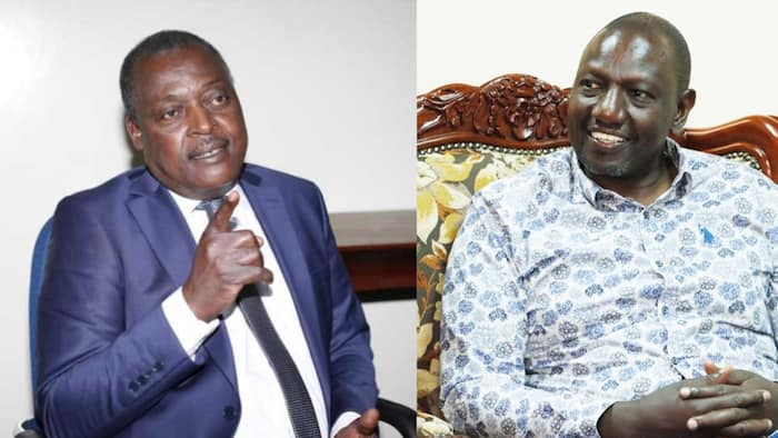 """Cyrus Jirongo Says Ruto Is Popular in Some Areas: """"You Can't Write Him Off"""""""