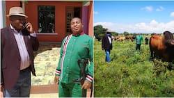 Ruto's man Ole Sankok tiptoes to Uhuru's camp after meeting Maina Kamanda