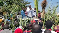 Rashid Echesa Confronts Mumias Resident Barely a Month after Slapping IEBC Official