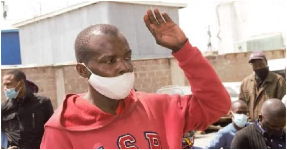 Raia wa DRC aamrishwa kupanda miti kwa miezi 3 Ngong Forest