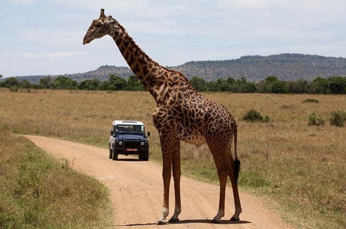 places to visit in kenya on a budget destinations in kenya coast family holiday destinations in kenya weekend getaways in nanyuki