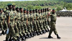 NYS boss Matilda Sakwa decries low turnout during this year's recruitment exercise