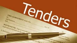 What Are the Current NGO Tenders in Kenya