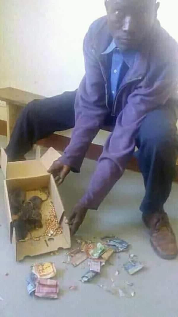Kioja: Mfanyibiashara apeleka panya 5 kituo cha polisi kwa kula pesa zake