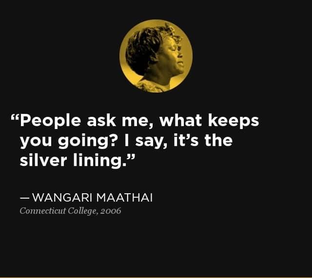 More wangari maathai quotes, Prof wangari maathai quotes, Quotes by wangari maathai