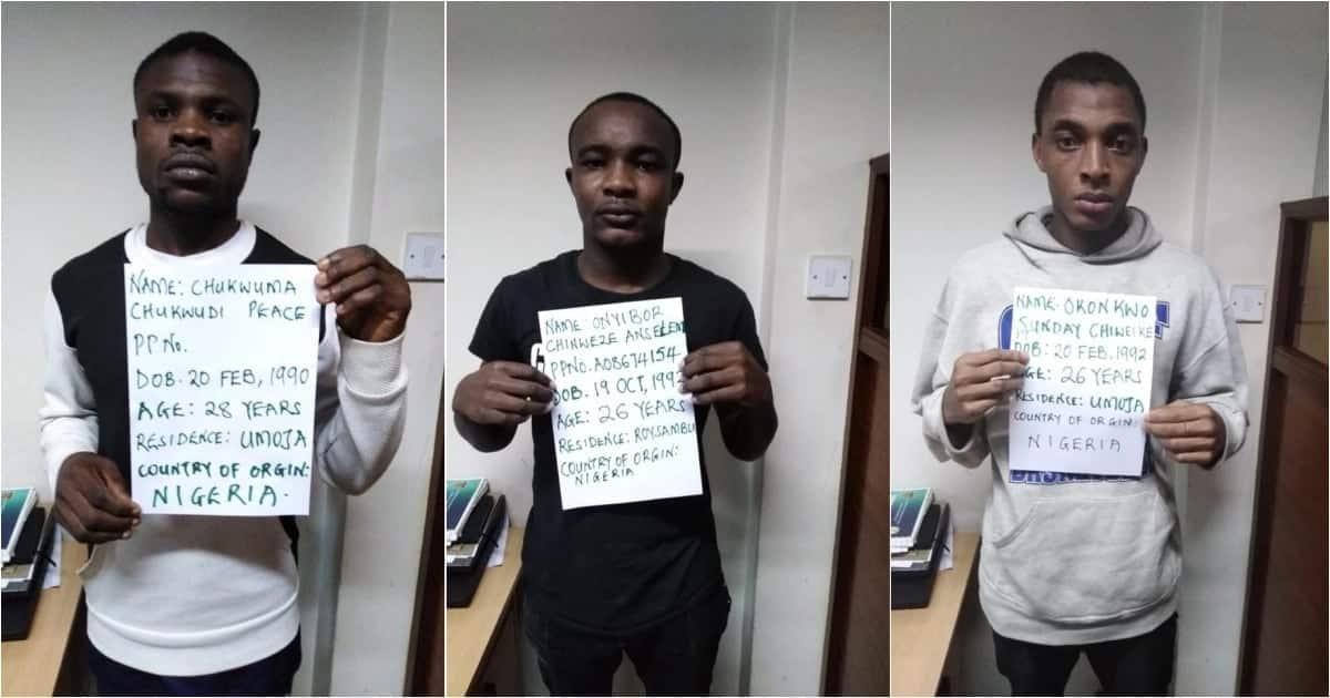 19 Nigerians behind online fraud in Nairobi arrested