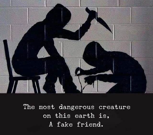 Funny Quotes About Fake Friends Tuko Co Ke
