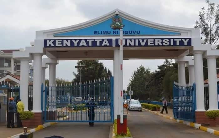 Kenyatta University courses, application, fees and contacts ▷ Tuko