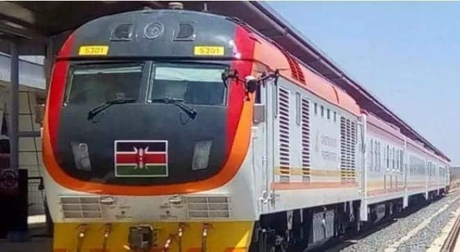 How the SGR became the cartel's worst nightmare