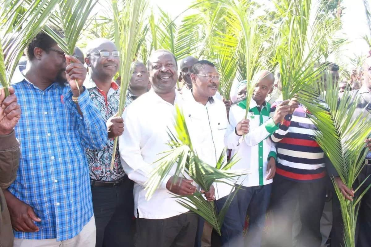 It is not yet Madaraka with such levels of corruption - Musalia Mudavadi