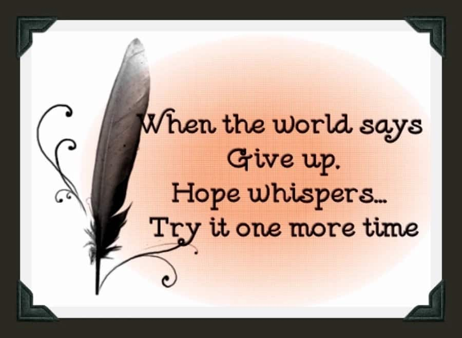 Never give up funny quotes Quotes about never giving up Short never give up quotes Never give up quotes and sayings