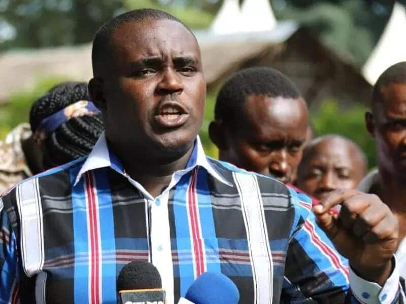 Kakamega Senator Cleophas Malala claims sports CS is an academic dwarf