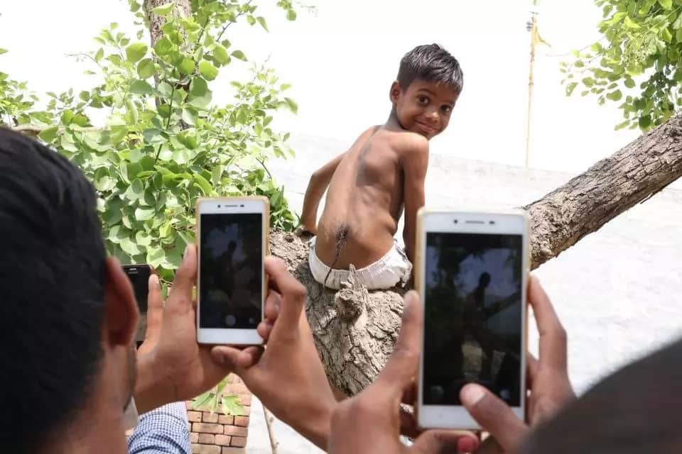 He has become a mini-celebrity. Interestingly, he is good at climbing trees, just like monkeys