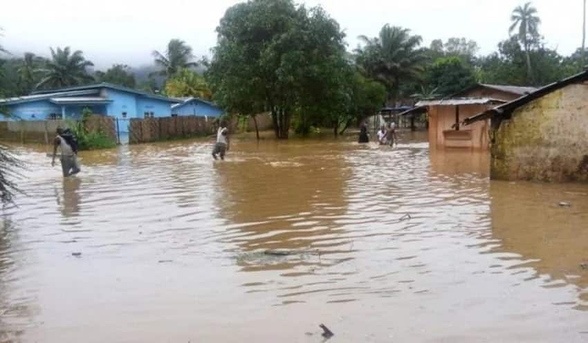 Postpone opening day for schools in flooding areas – National association of parents