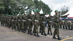 KDF Soldiers' Widows, Widowers without Children Won't Get Pension, Gratuity Upon Remarrying