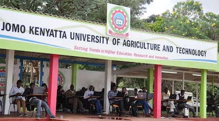 JKUAT hit by cholera outbreak, students asked to keep off hawked food, water