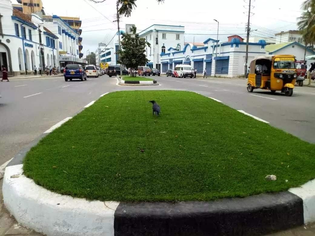 Governor Joho introduces plastic grass for Mombasa beautification