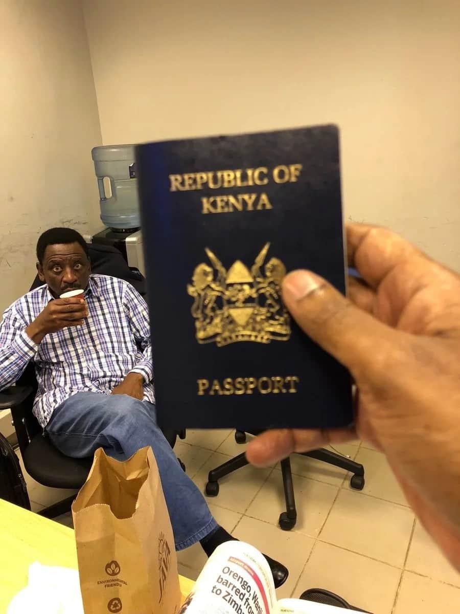Kenyan Passport TRACKING 2019 ▷ Tuko co ke