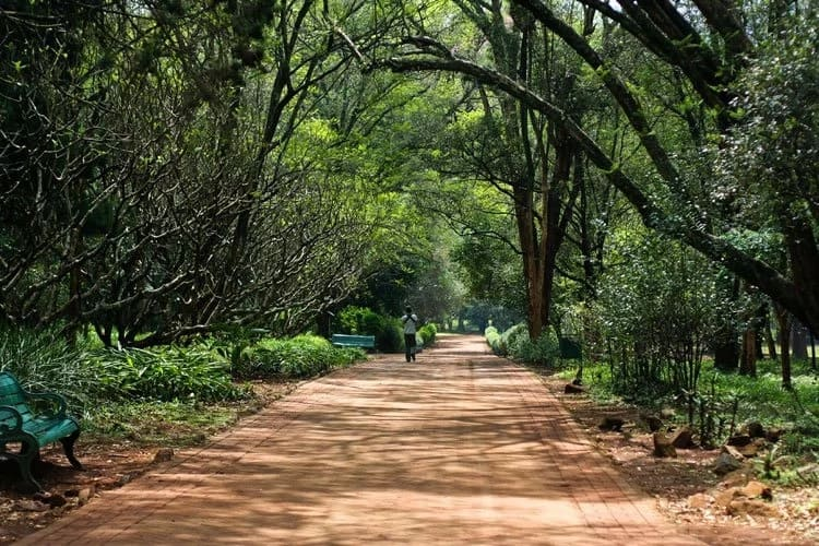 0fgjhs1p4h6vdoa268 - Top 10 Cool Places You can Visit On A Weekend In Nairobi