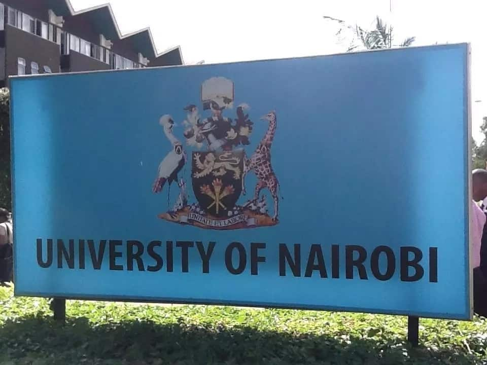 University of nairobi school of medicine