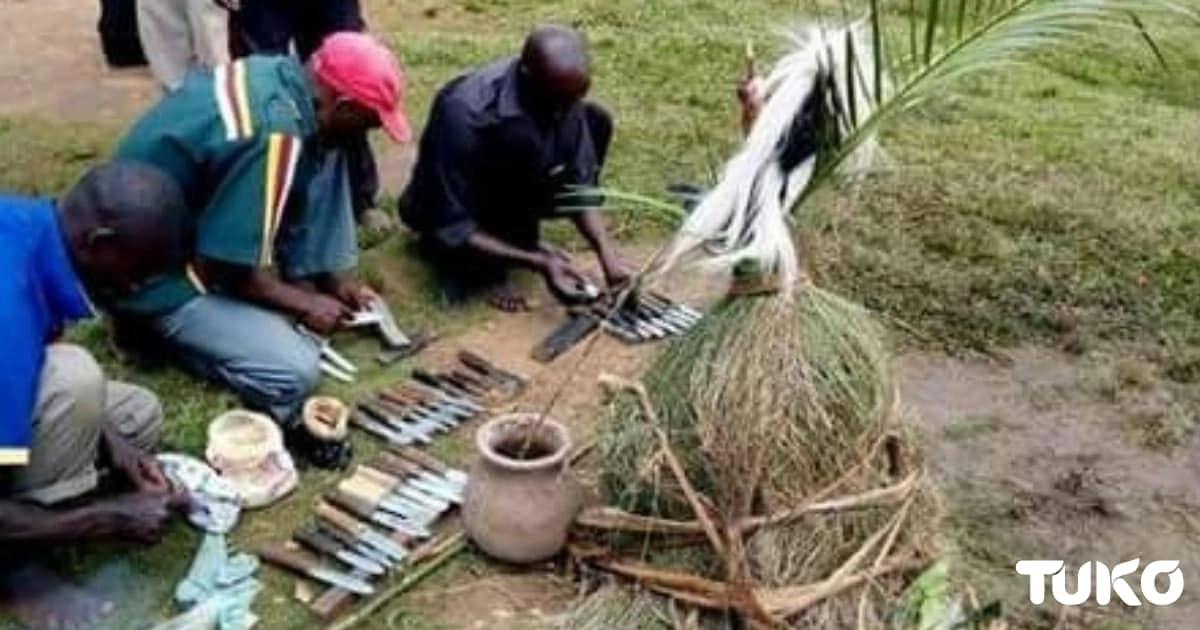 Wazee wa Kibukusu wajitayarisha kwa msimu wa kupasha tohara