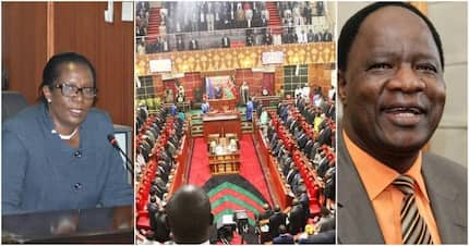 Salaries and Remuneration Commission nominees promise to increase MPs salaries