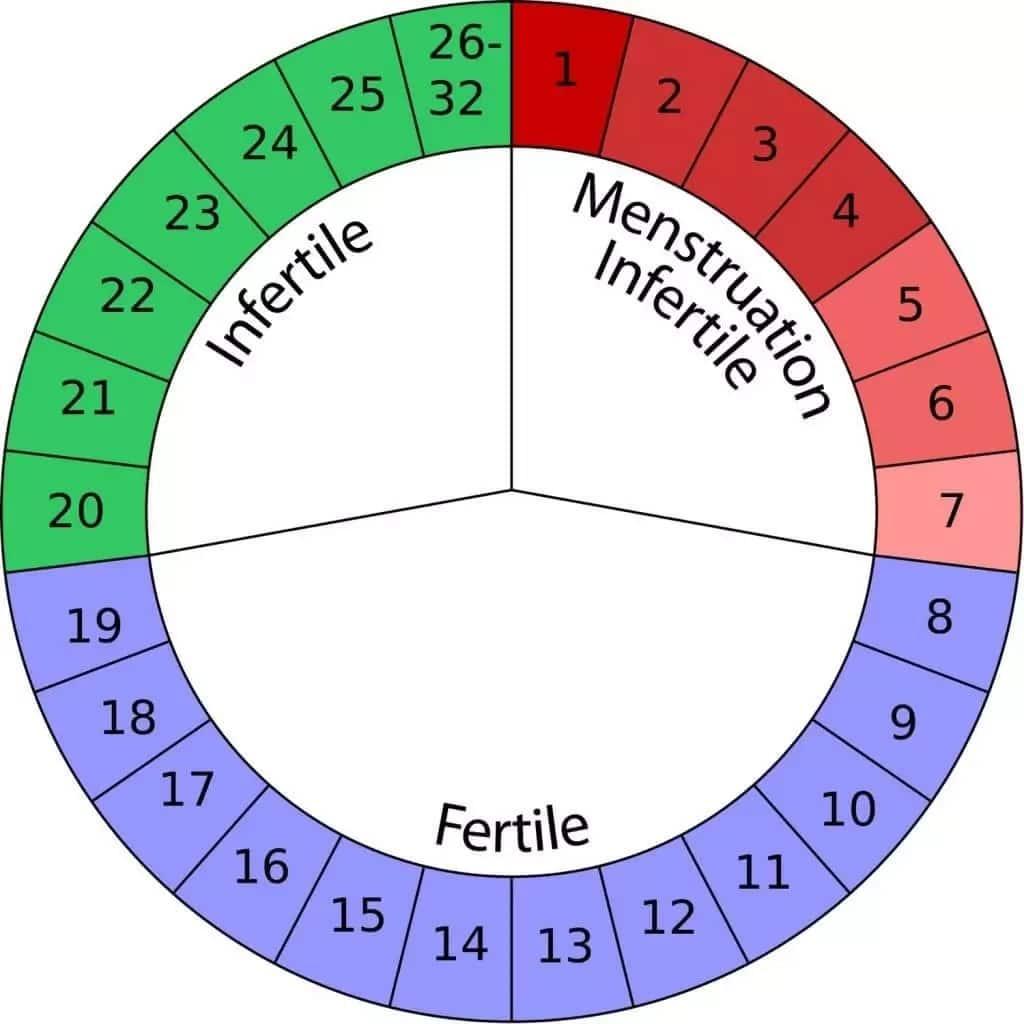safe sex menstrual cycle calculator in Mackay