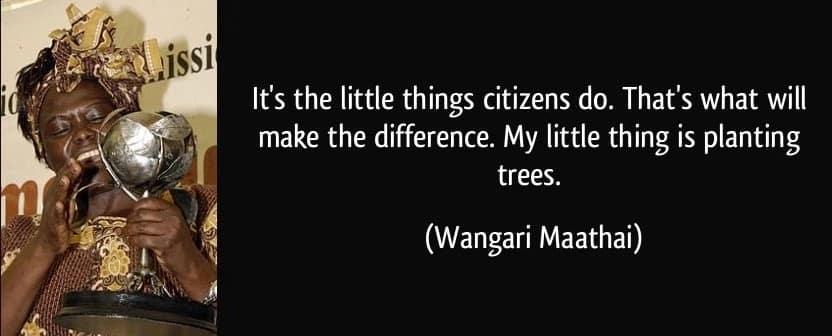 Wangari maathai quotes on forests,Wangari maathai ispirational quotes, Dr. wangari maathai quotes