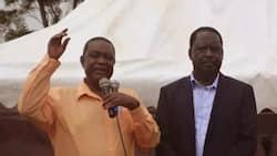 Nduguye Raila Odinga atuma ombi la kuteuliwa katika bunge la Afrika Mashariki