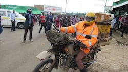 Courageous boda boda rider braves swarm of bees after descending on his motorbike in bizarre incident