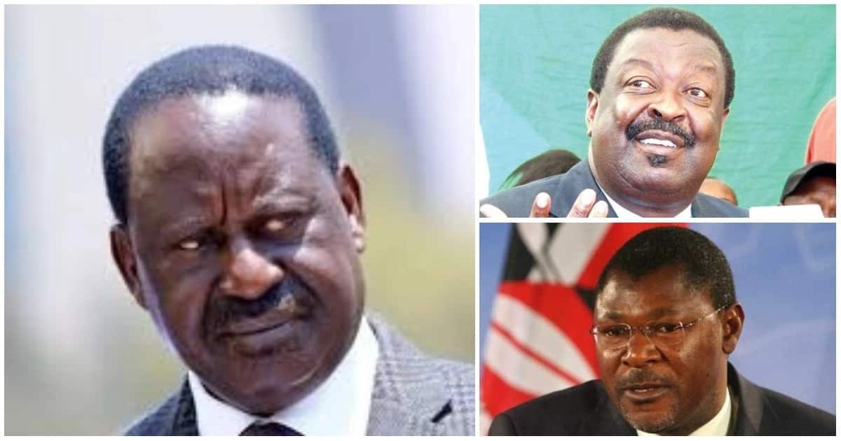 ANC Party leader Musalia Mudavadi, Ford Kenya boss Moses Wetangula join Jubilee leaders in opposing ODM party leader Raila Odinga's proposed three-tier governance structure.