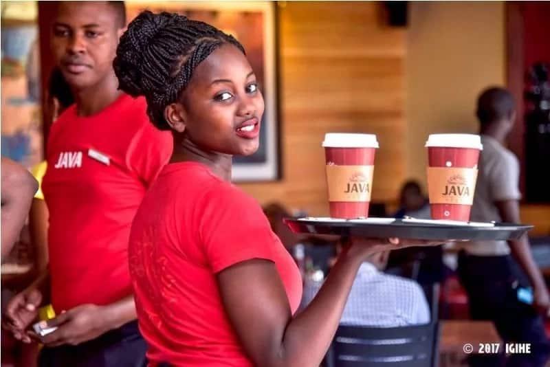 Java coffee house jobs