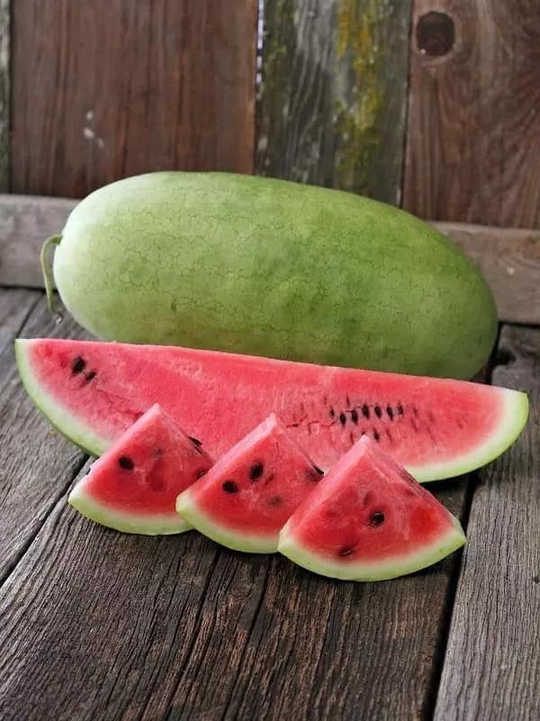 Areas suitable for watermelon farming in Kenya