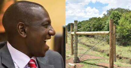 William Ruto azindua ua la KSh 200 milioni Laikipia