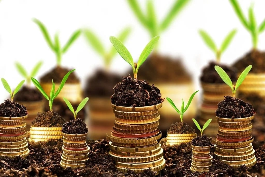Business Ideas in Kenya with Small Capital That End up Lucrative