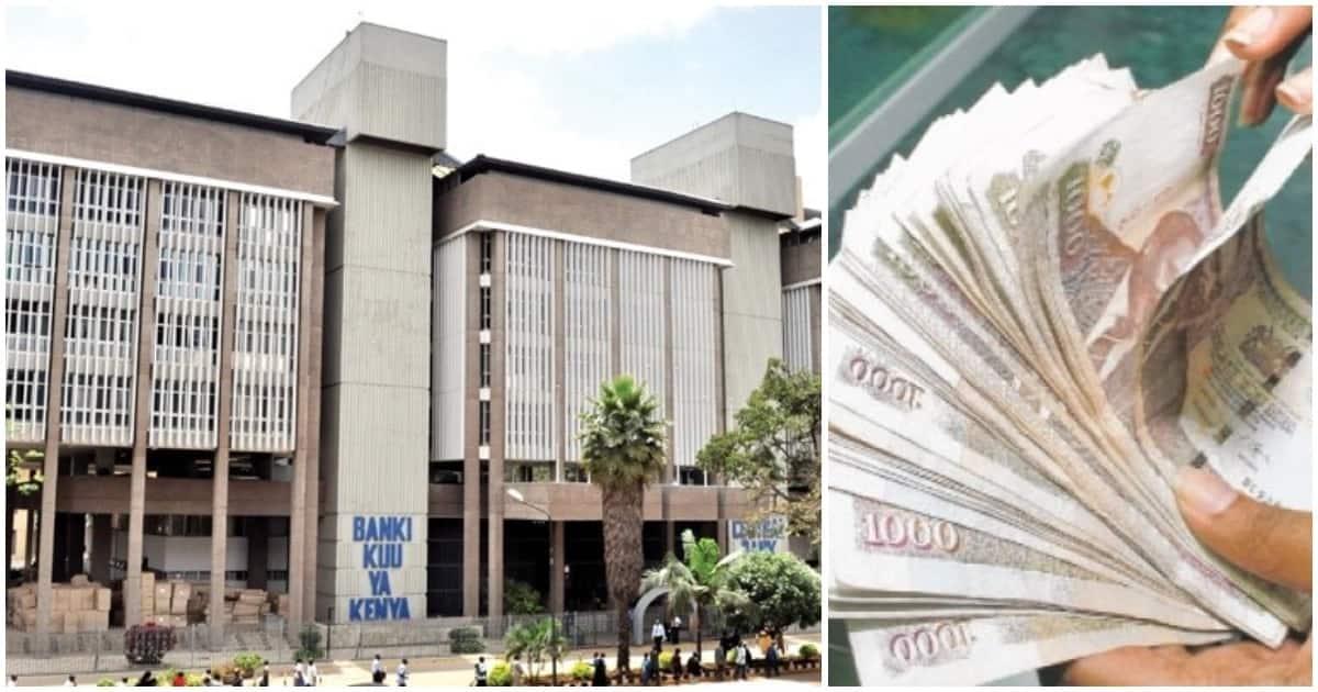 Kenyans in diaspora sent home record KSh 64 billion and TUKO.co.ke knows where the cash went