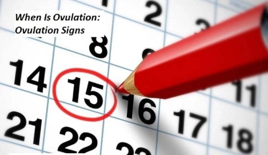 Signs and symptoms of ovulation, ovulation pain, how to know ovulation