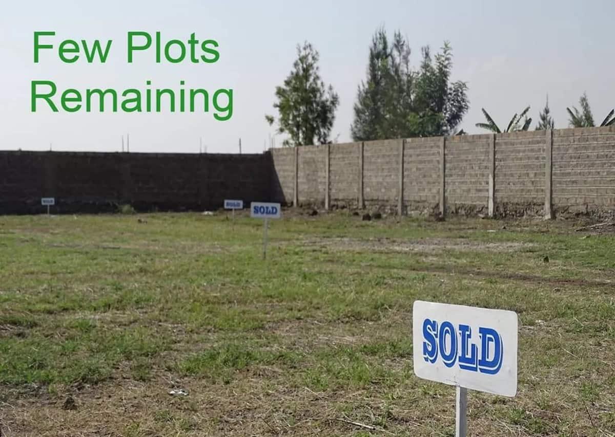 Land buying in Kenya