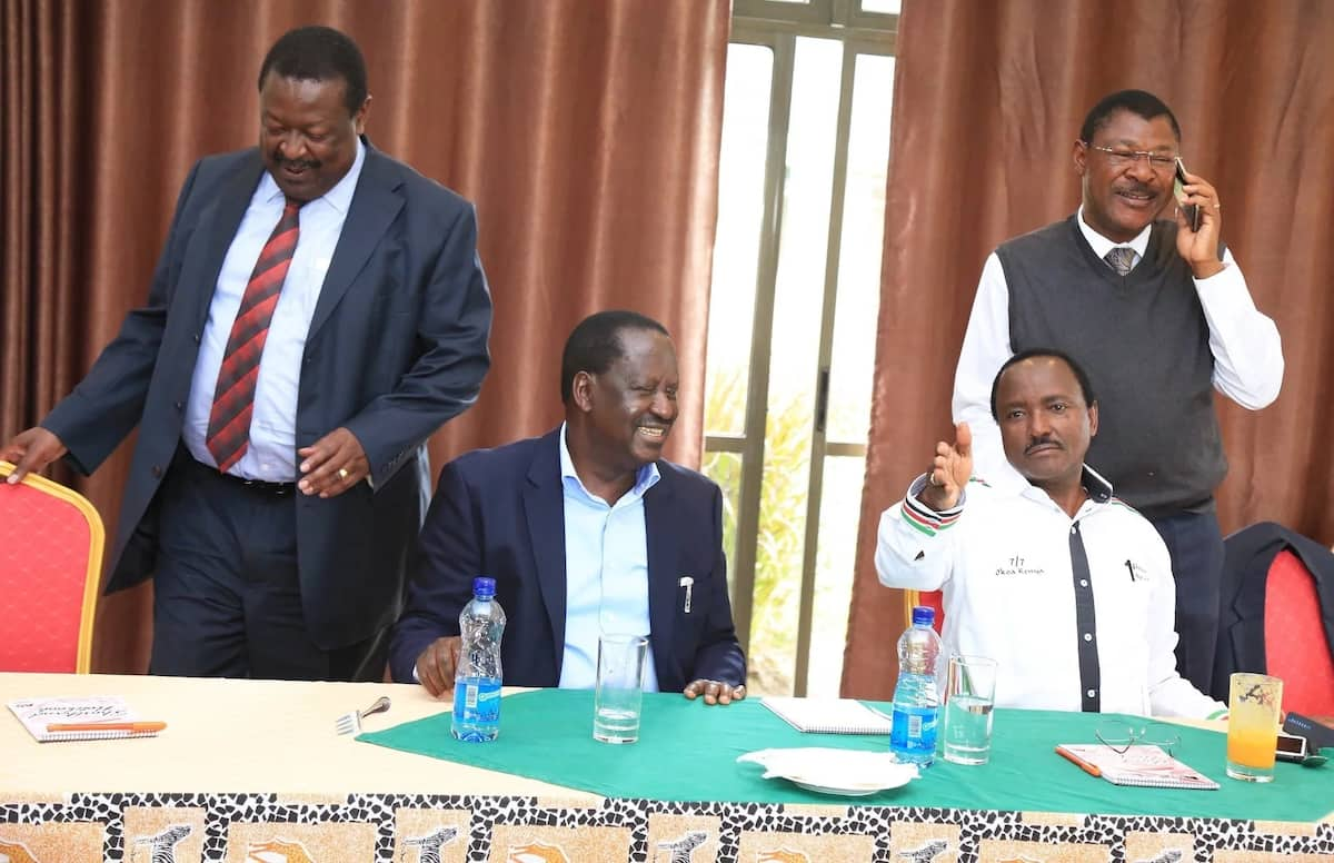 NASA co-principals Mudavadi,Kalonzo,Wetangula finally welcome Raila-Uhuru political deal
