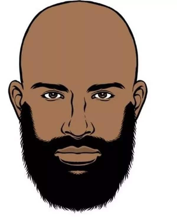 beard Bald man beard style