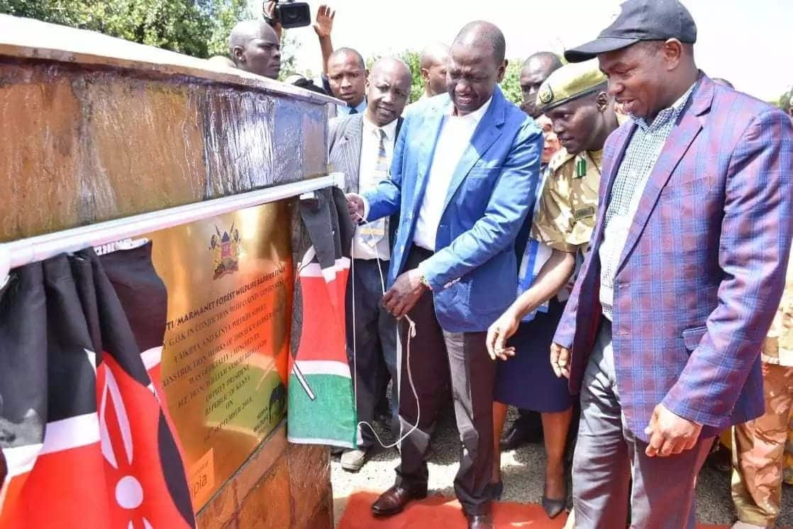 William Ruto launches KSh 200 million fence in Laikipia to end human-wildlife conflict