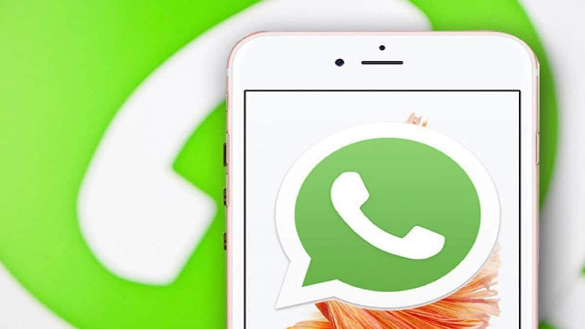 Top Kenyan WhatsApp groups ▷ Tuko co ke