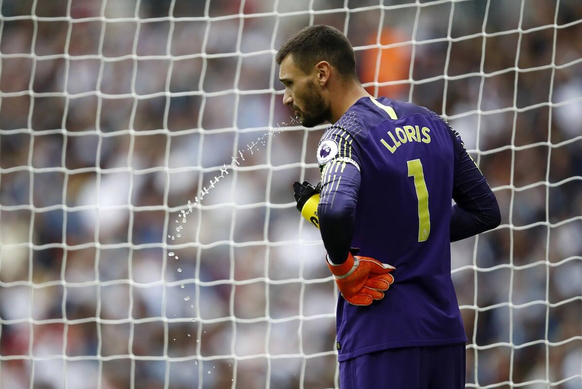 Hugo Lloris pleads guilty to drink-driving, gets 20-month ban and pays KSh 6.5 million
