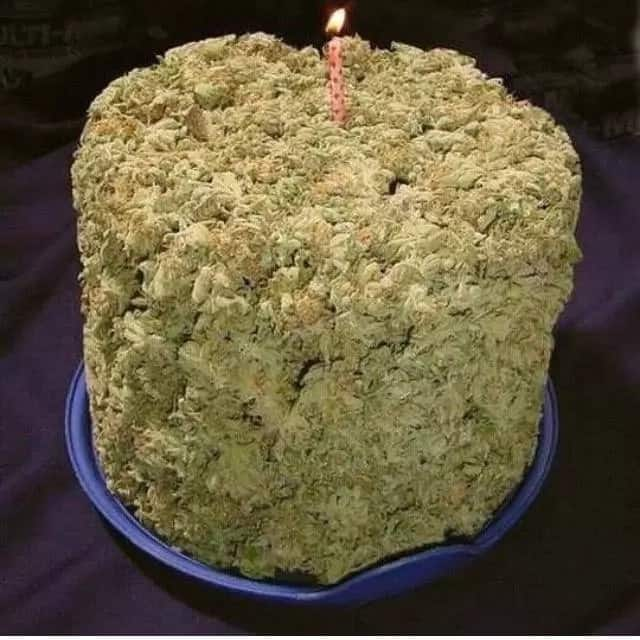 Maasai Mara University students arrested for baking, selling weed cakes